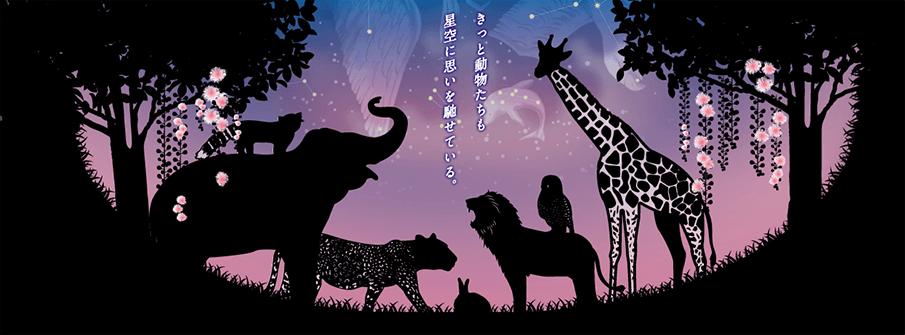 「夜の動植物園」で夜だけの体験を