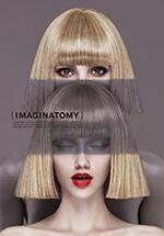 imaginatomy_icon