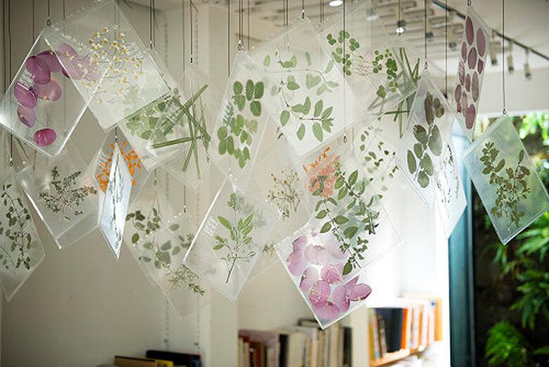 引用元:Have a Herbal Harvest 公式サイト