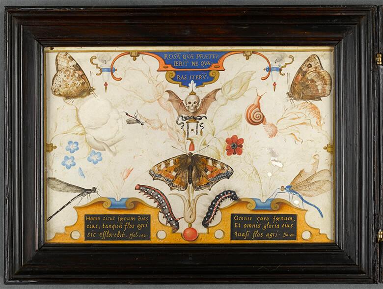 ヨーリス・フーフナーヘル 《人生の短さの寓意》(二連画、部分)1591年、水彩・ヴェラム、 リール美術館Photo ⓒRMN -cliché StéphaneMaréchalle
