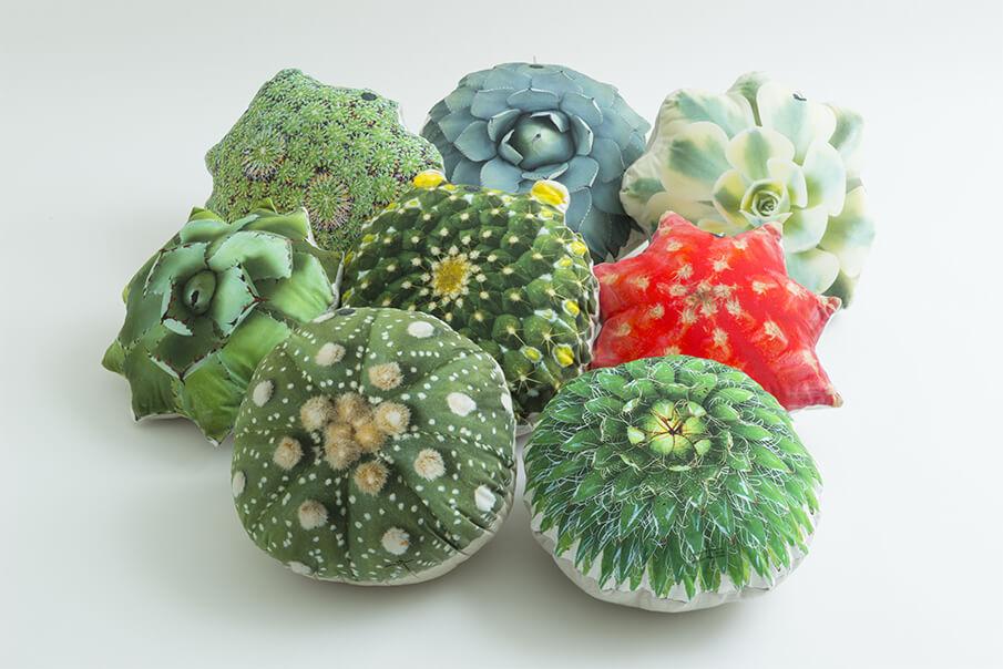 室内の新しい緑化の形。多⾁植物をモチーフにした「たにくっしょん®」